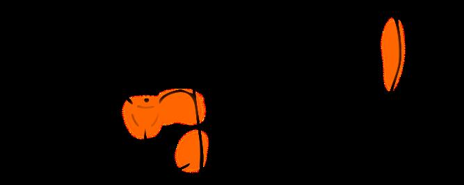 【症例】脇腹下から臀部の痛み